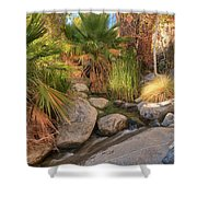 Andreas Canyon Babble Shower Curtain