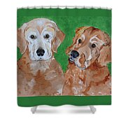 Andy And Max Shower Curtain