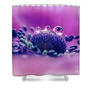 Anemone 05-1 Shower Curtain