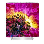 Anemone Abstracted In Fuchsia Shower Curtain