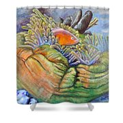 Anemone Coral And Fish Shower Curtain