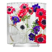 Anemone Flowers  Shower Curtain