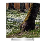Anemone Forest Shower Curtain