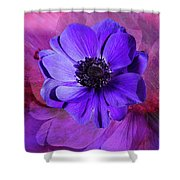 Anemone In Purple Shower Curtain