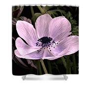 Anemore In Pink Shower Curtain