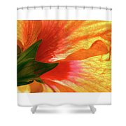 Angel Brushstrokes  Shower Curtain