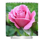 Angel Face Rose Shower Curtain