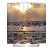 Angel In Approach For Landing 2 Shower Curtain