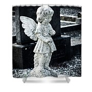 Angel In Roscommon No 3 Shower Curtain
