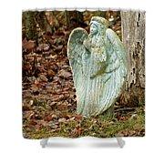 Angel In The Woods Shower Curtain by Danielle Allard