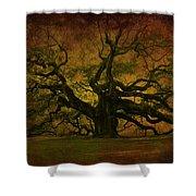 Angel Oak 3 Charleston Shower Curtain
