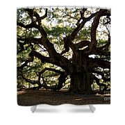 Angel Oak In November Shower Curtain