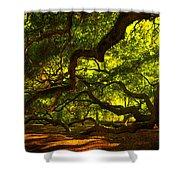 Angel Oak Limbs 2 Shower Curtain by Susanne Van Hulst