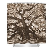 Angel Oak Sepia Shower Curtain