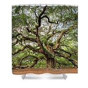 Angel Oak Tree Of Life Shower Curtain