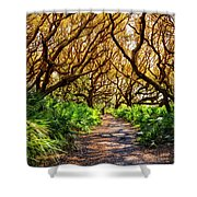 Angel Oaks In Sunshine Shower Curtain