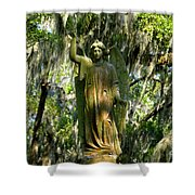 Angel Of Savanna Shower Curtain