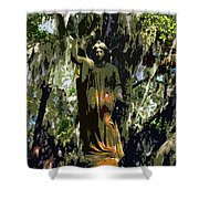 Angel Of Savannah Shower Curtain