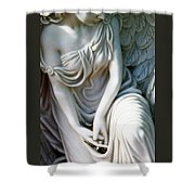 Angel Series Shower Curtain