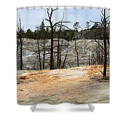 Angel Terrace At Mammoth Hot Springs Yellowstone National Park Shower Curtain