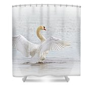 Swan Angel Wings I Shower Curtain