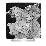 Angel With Harp Shower Curtain