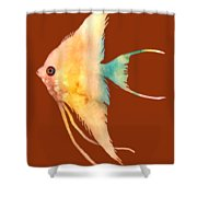 Angelfish II - Solid Background Shower Curtain by Hailey E Herrera