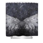 Angelic Visitation Shower Curtain