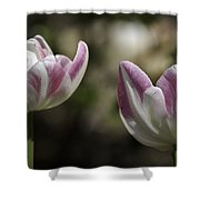 Angelique Peony Tulips 2 Shower Curtain