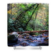 Angels At The River Shower Curtain