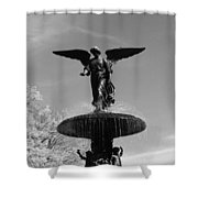 Angel Wing Shower Curtain