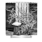 Angry Plant Bw Shower Curtain