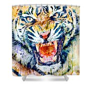 Angry Tiger Watercolor Close-up Shower Curtain
