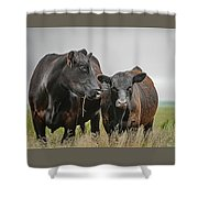 Angus Pair Shower Curtain
