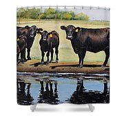 Angus Reflections Shower Curtain