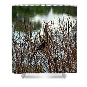 Anhinga Calling Shower Curtain