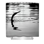 Anhinga In Silouette Shower Curtain