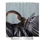 Anhinga Sunning Shower Curtain