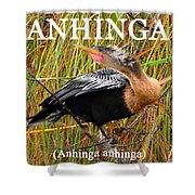 Anhinga The Swimming Bird Shower Curtain