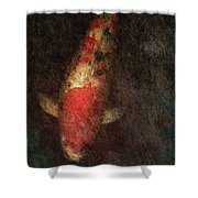 Animal - Fish - Kingyo Shower Curtain