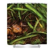 Animal - Wild - Cute Little Chipmunk  Shower Curtain
