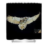 Animal - Bird - Great Horned Owl Wings Spread Shower Curtain