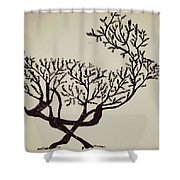 Animal Drawing Shower Curtain