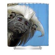 Animals 58 Shower Curtain