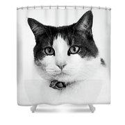 Animals 92 Shower Curtain