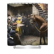 Animals: Clever Hans, 1904 Shower Curtain