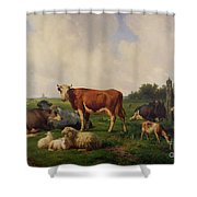 Animals Grazing In A Meadow  Shower Curtain by Hendrikus van de Sende Baachyssun