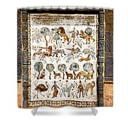 Animals Past And Present Shower Curtain
