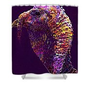 Animals Species Mixed Forest  Shower Curtain