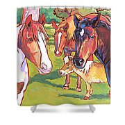 Anjelica Huston's Horses Shower Curtain